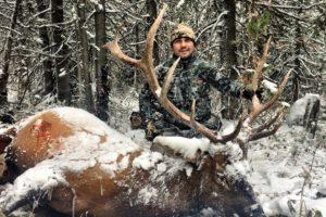 Montana Archery Elk hunting